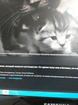 Кошки - Отдаю в хорошие руки месячного котика от…, 0