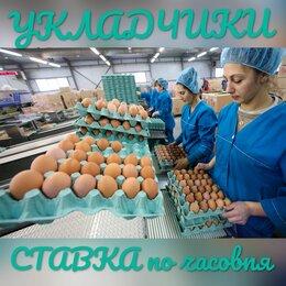 Укладчик - ВАХТА - МОСКВА/УКЛАДЧИКИ с почасовой оплатой, 0
