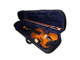 Смычковые инструменты - Aileen VG001HPM-4/4 - скрипка, размер 4/4, 0