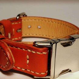 Ошейники  - Ошейник для собаки с пряжкой фастекс, ширина 3 см., 0