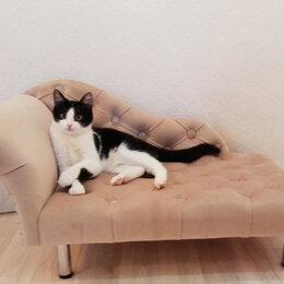 Лежаки, домики, спальные места - Лежанка для животных в стиле Рекамье, 0