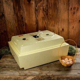 Товары для сельскохозяйственных животных - Инкубатор для цыплят Несушка 63 яйца 220/12…, 0