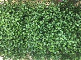 Искусственные растения - Самшитовый коврик 25х25 см искусственное растение, 0