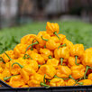 Супер острые соусы Moon Hot Saucе и перцы Moon Hot Peppers по цене не указана - Продукты, фото 11