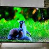 """Телевизор Xiaomi 43"""" глобальная версия + настроен по цене 26999₽ - Телевизоры, фото 1"""