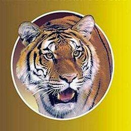 Приборы и аксессуары - Согревающий Тигровый пластырь 20 штук, 0