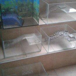 Аквариумы, террариумы, тумбы - Черепашатники / аквариум для черепах, 0