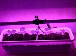 Аксессуары и средства для ухода за растениями - Подсветка для рассады на базе полноспектровых…, 0