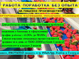Упаковщик - Рабочие на Пищевое производство  , 0
