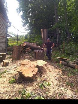 Бытовые услуги - Спил деревьев любой сложности, 0