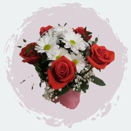 Комнатные растения - Цветы Лилия, 0