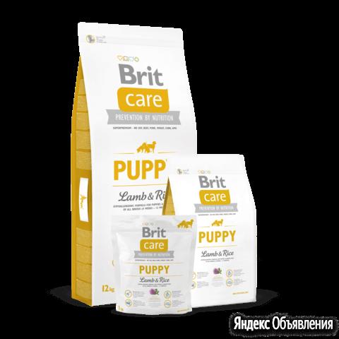 Корм Brit Care Puppy Lamb & Rice для щенков всех п по цене 6394₽ - Корма , фото 0
