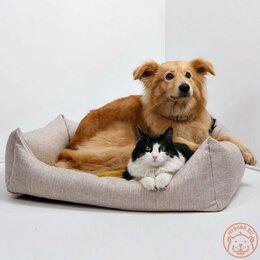 Лежаки, домики, спальные места - Лежанки, матрасики для кошек и собак, 0