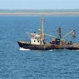 Производство - Рыбодобывающее предприятие , 0