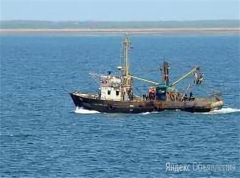 Рыбодобывающее предприятие  по цене 380000000₽ - Производство, фото 0