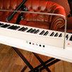 Цифровое Пианино Artesia Performer White по цене 19500₽ - Клавишные инструменты, фото 6