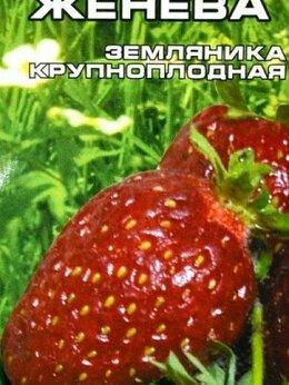 Семена - Женева Земляника СС 10шт Сибирский сад, 0