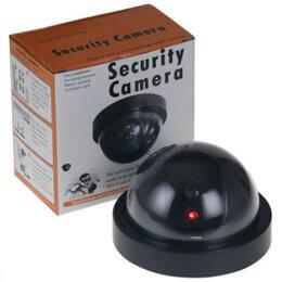 Камеры видеонаблюдения - Муляж камеры видеонаблюдения, 0