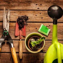 Субстраты, грунты, мульча - Земля садовая в мешках, Грунт растительный, Торф для посадок, 0