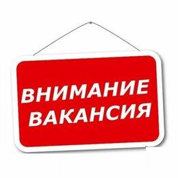 Менеджер - Менеджер интернет-магазина ( удаленно), 0