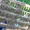 Добрая Пасека мед. Пчеломатки плодные Карника F1. Без предоплаты по цене 1500₽ - Сельскохозяйственные животные и птицы, фото 2