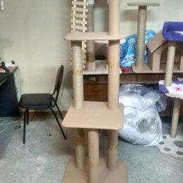 Когтеточки и комплексы  - Игровой комплекс для кошки домик лежак когтеточка хобби, 0