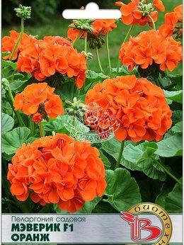 Рассада, саженцы, кустарники, деревья - Пеларгония садовая Мэверик F1 Оранж (Биотехника), 0