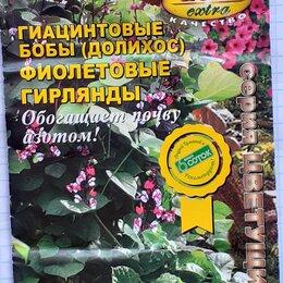 Семена - Семена ГИАЦИНТОВЫХ бобов, 0