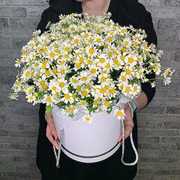Цветы, букеты, композиции - Ромашки в коробке, 0