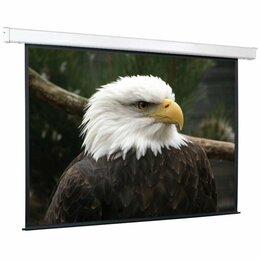 Экраны - Экран настенно-потолочный ScreenMedia Champion 203х203 MW (SCM-1104), 0