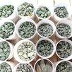 Камни для бани Жадеит шлифованный по цене 232₽ - Камни для печей, фото 4