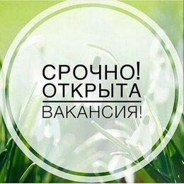 Консультант - Консультант интернет-магазина, 0