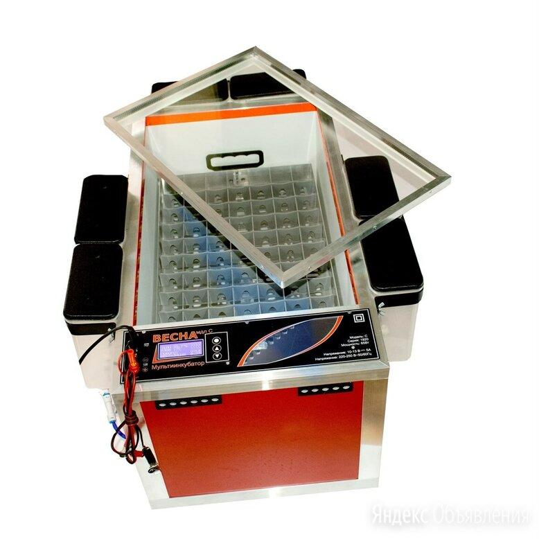 Мульти инкубатор Весна 220/12/переворот/влажность по цене 19500₽ - Клетки и домики, фото 0