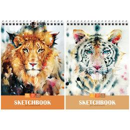 "Рисование - Скетчбук-блокнот для акварели 20л. А5 на гребне ArtSpace ""Wild cats"", 180г/м2, 0"