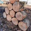 Дрова  дуб по цене 2300₽ - Дрова, фото 5