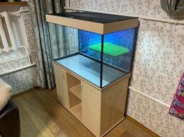 Аквариумы, террариумы, тумбы - Террариум 300 литров для черепах Новый Гарантия, 0