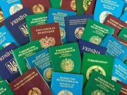 Финансы, бухгалтерия и юриспруденция - Заявление на РВП, ВНЖ, гражданство ОНЛАЙН, 0