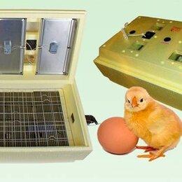 Товары для сельскохозяйственных животных - Инкубатор для цыплят гусят и утят Золушка на 45 яиц 220/12 с ручным поворотом, 0