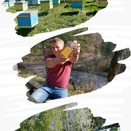 Продукты - Алтайский мёд фасованный, весовой оптом, 0
