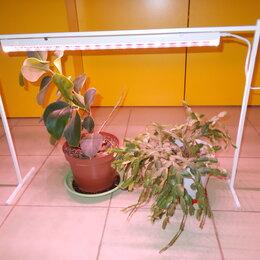 Аксессуары и средства для ухода за растениями - Светодиодный светильник для растений с подставкой, 0