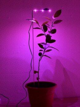 """Аксессуары и средства для ухода за растениями - Подсветка для растений в горшках """"Фейт"""", 0"""