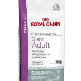 Корма  - Джайнт эдалт GIANT ADULT 20 кг royal canin, 0