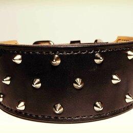 Ошейники  - Кожаный ошейник с шипами для крупных собак, ширина 6 см., 0