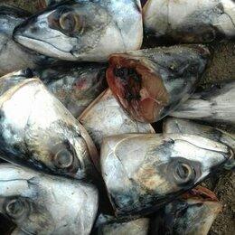 Прочие товары для животных - Рыбные отходы на корм животным, 0