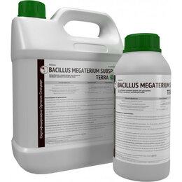 Удобрения - Биомасса Bacillus megaterium subsp. terra, 0