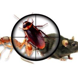 Дезинфицирующие средства - Полное уничтожение тараканов, клопов, блох, муравьёв и других насекомых. , 0