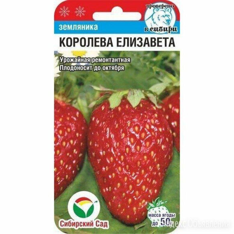 Королева Елизавета Клубника СС 10шт Сибирский сад по цене 41₽ - Семена, фото 0