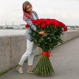 Цветы, букеты, композиции - Розы 1 метр Эквадор, 0