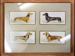 Картины, постеры, гобелены, панно - Картина акварелью Собаки - таксы, 0