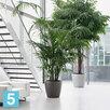 Напольное кашпо Lechuza Classico, черное 35-d, 33-h по цене 5790₽ - Горшки, подставки для цветов, фото 5